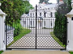 Ворота и калитки из профнастила с элементами ковки